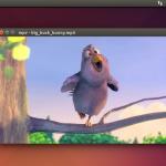 Install Acrobat Reader on Linux Mint 16/Ubuntu 13.10 Applications
