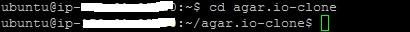 agario ubuntu 3