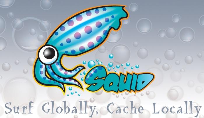 squid cache proxy